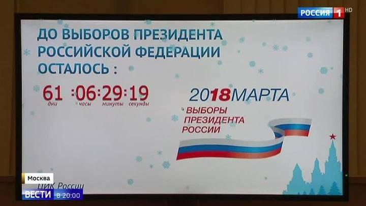 Планы на Кремль: кандидаты пьют таблетки, собирают подписи и растят бороды