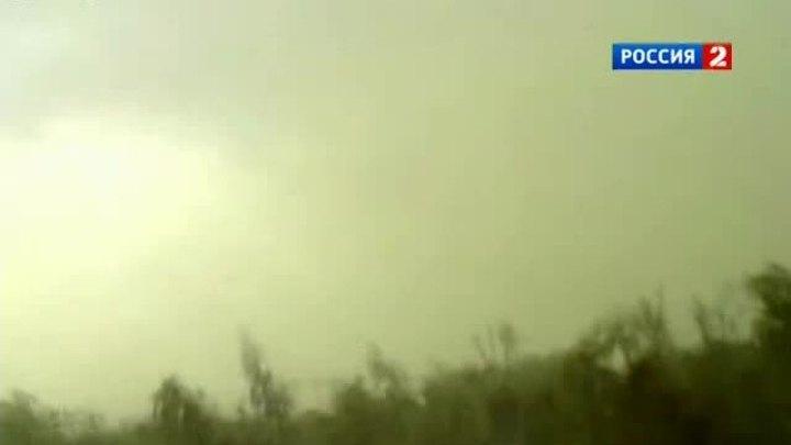 Зеленые облака из пыльцы накрыли Москву