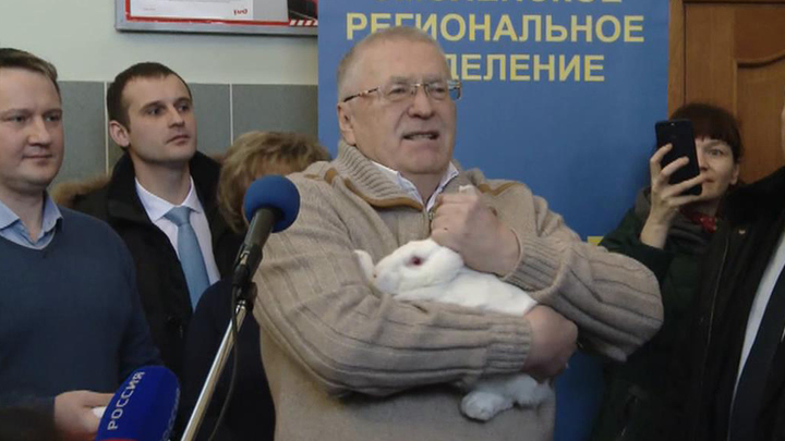 https://cdn-st1.rtr-vesti.ru/vh/pictures/xw/152/492/0.jpg