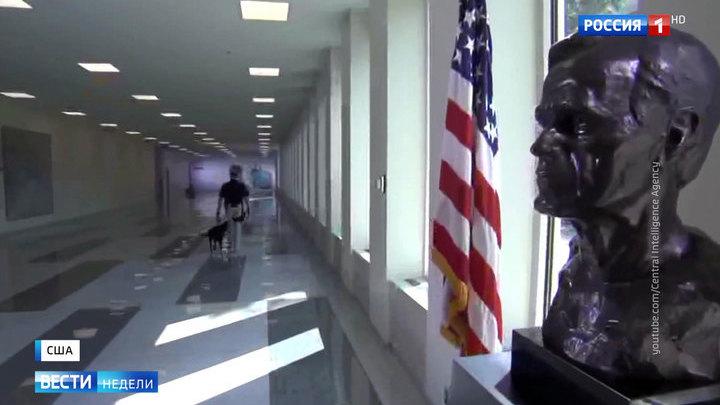 """Вашингтон вмешивается в чужие выборы """"с благими намерениями"""""""