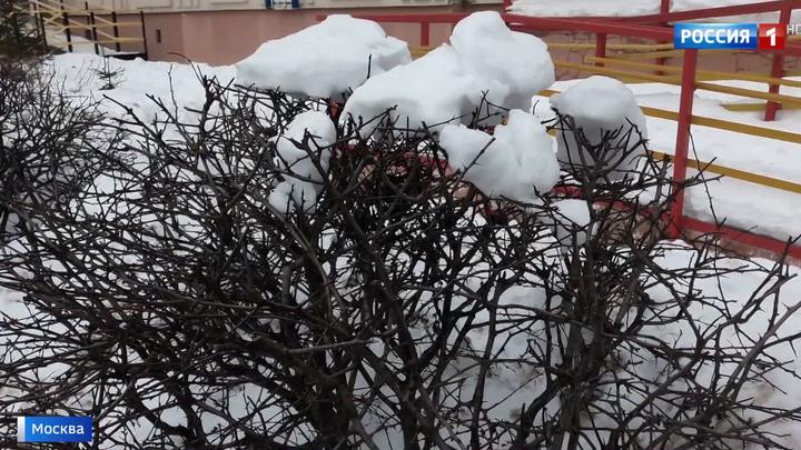 На Москву идет мощный снежный циклон