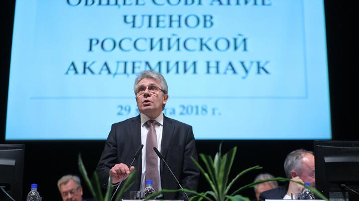 РАН выбрала новых членов президиума
