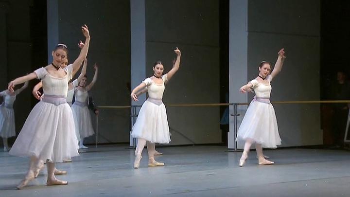 В Петербурге открылся крупнейший в России международный фестиваль балета Dance Open