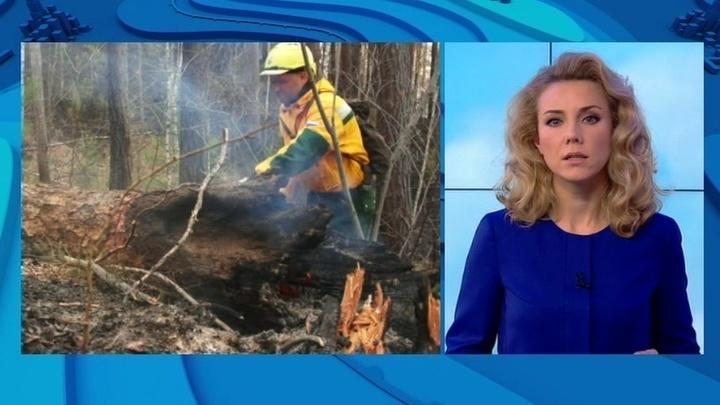 """""""Погода 24"""": из-за ранней весны на Дальнем Востоке разрастаются лесные пожары"""