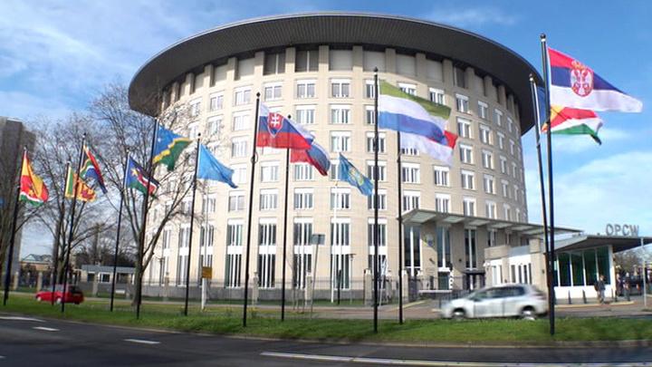 МИД РФ одобрил решение ОЗХО послать в Сирию экспертов для расследования химатак