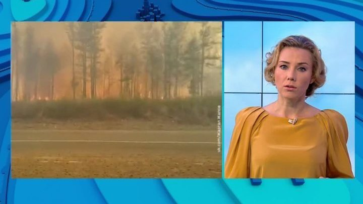 """""""Погода 24"""": в Амурской области и Забайкальском крае бушуют лесные пожары"""