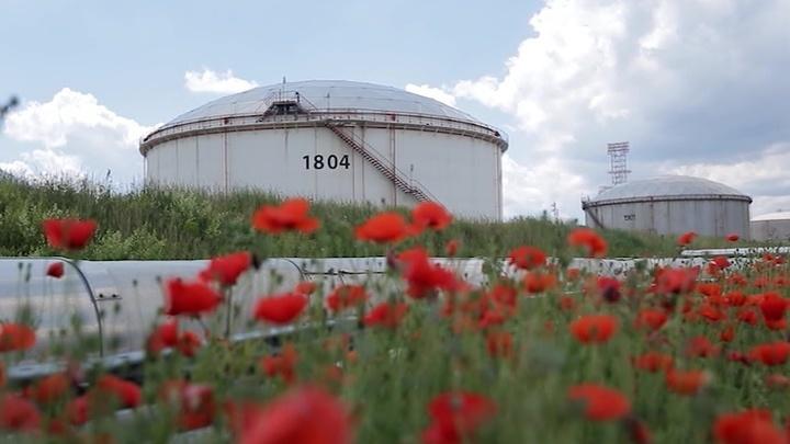 Энергетика. Нефтегазовое партнерство: Россия - Сербия. Специальный репортаж Полины Крикун