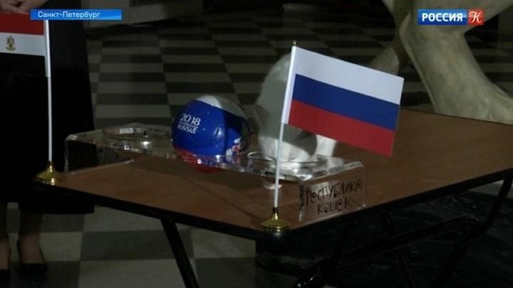 Кот Ахилл предсказал победу российской сборной в игре с Египтом