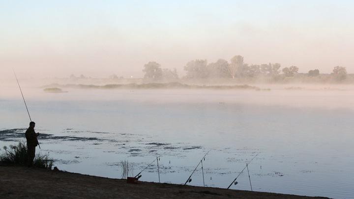 Утро на берегу Оки