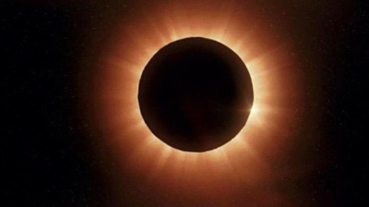 Затмение Солнца Суперлуной в пятницу, 13-го лучше всех было видно пингвинам и кенгуру