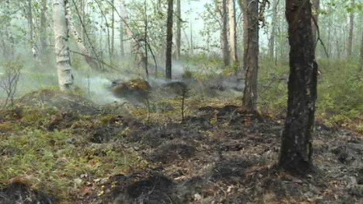 В Якутии горит 17 тысяч гектаров леса