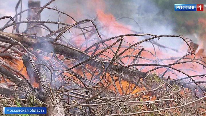 Сотни жителей Одинцовского района Подмосковья задыхаются от едкого дыма
