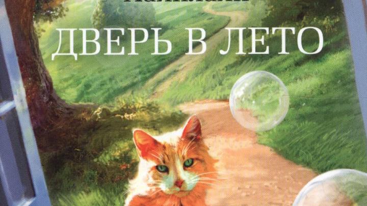 Фото предоставлено Ильёй Сайтановым