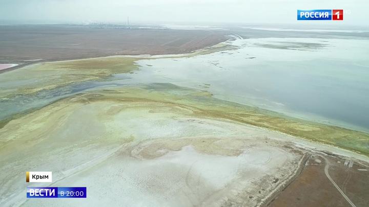 Выброс ядовитых веществ в Крыму спровоцировала Украина