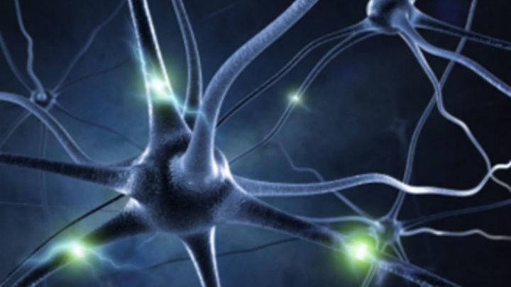 Восстановить нервы можно при помощи нехитрого устройства, напечатанного на 3D-принтере