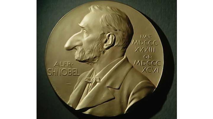 В этом году лауреаты премии получили чеки на 10 триллионов долларов Зимбабве (около 40 центов в долларах США). Кстати, директор Резервного банка Зимбабве удостоился Шнобелевской премии по математике ещё в 2009 году.