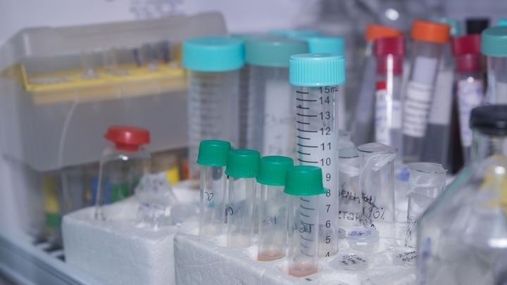 У женщин с аутоиммунными заболеваниями при беременности наблюдается улучшение состояния, поэтому специалисты предположили, что ТБГ может стать основой для будущего лекарства от таких болезней