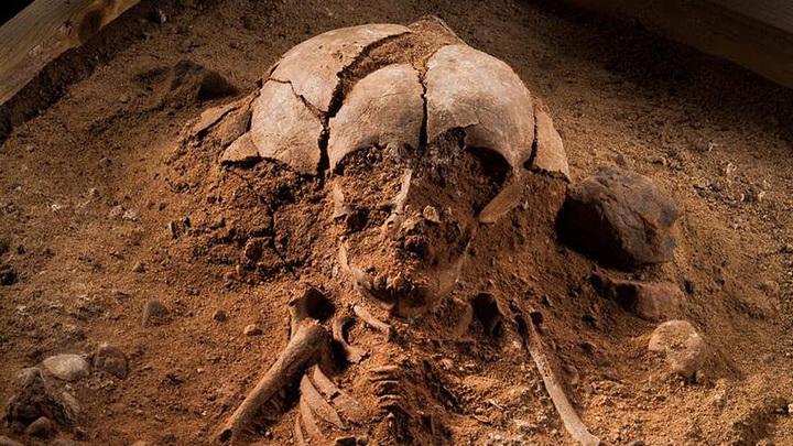 Скелет младенца из Гросс Фреденвальде