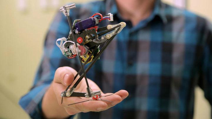 """Робот """"Сальто"""" имитирует прыгучесть обезьян галаго."""