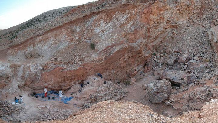 Образцы окаменелых останков были обнаружены в месте Джебель-Ирхуд, Марокко.