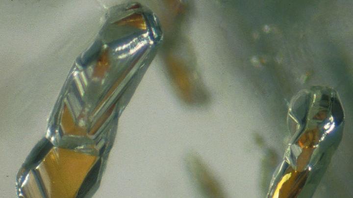 Материалом для исследования послужили алмазы с включениями грана.