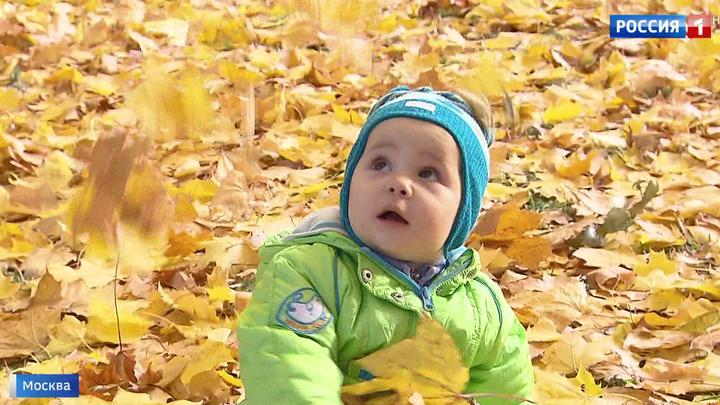 Наслаждаться золотой осенью в Москве можно будет еще неделю