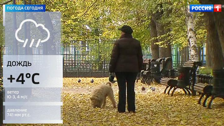 Пасмурная и дождливая погода пришла в Москву на смену солнцу