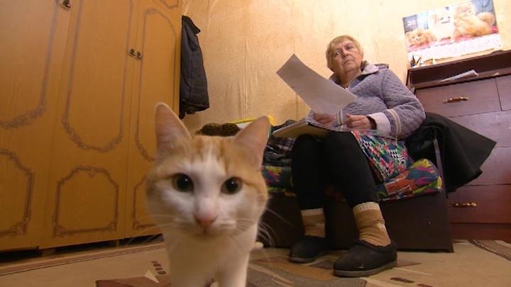 Владимирский трактат. Специальный репортаж Антона Подковенко