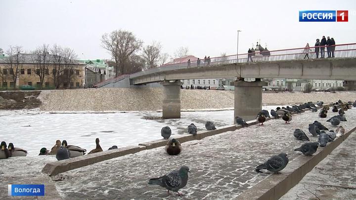 В Вологде заливают в бетон живописную историческую набережную