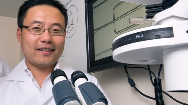 """Вэйань Чжао, глава научной группы. """"Лаборатория-на-чипе"""", созданная под его руководством, повысит эффективность и скорость целевого лечения рака."""