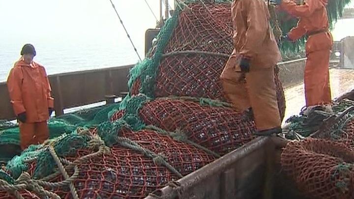 Торговые организации Приморья договорились о ценах на рыбу
