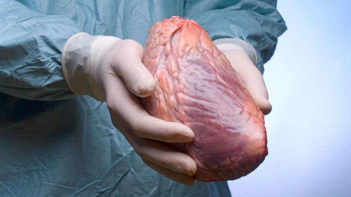 Многих пациентов может спасти только пересадка сердца, но доноров всегда меньше, чем нуждающихся в новом органе.