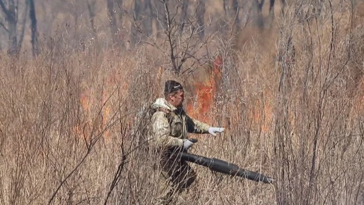 """В Приморье зима """"кончилась"""", начались пожары"""