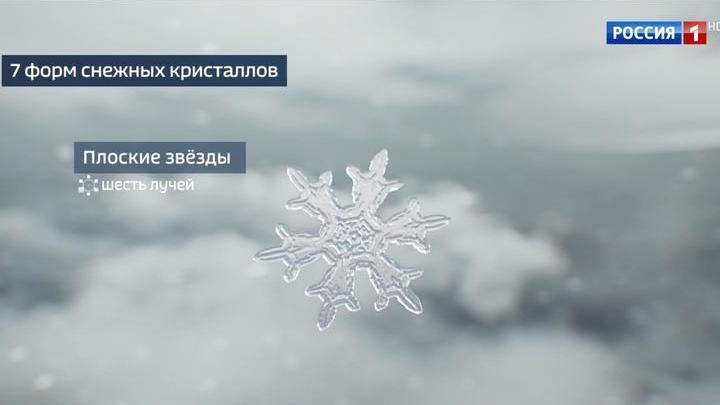 Из чего состоят сугробы: синоптики насчитали семь типов снежных кристаллов
