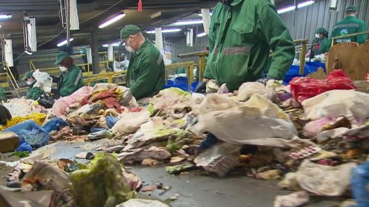 Основы бытовой экологии: в Москве начали обучение по раскладыванию отходов