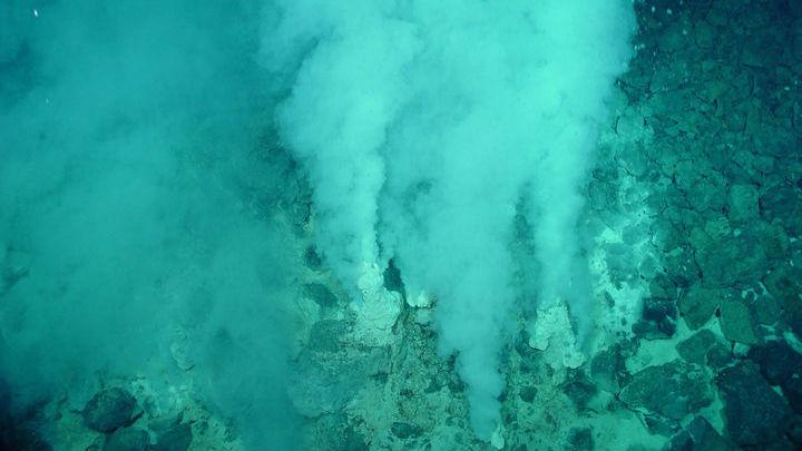 """Подводные геотермальные источники могли служить """"лабораторией"""", в которой появилась жизнь."""