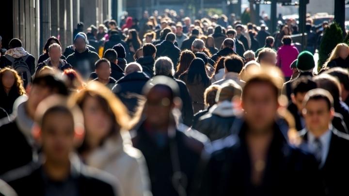 Отпуск дома в этом году планируют провести около трети россиян