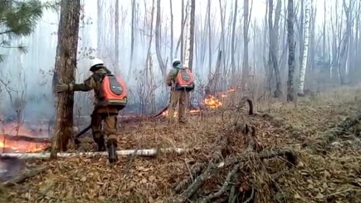 В Приморье сложилась пожароопасная ситуация
