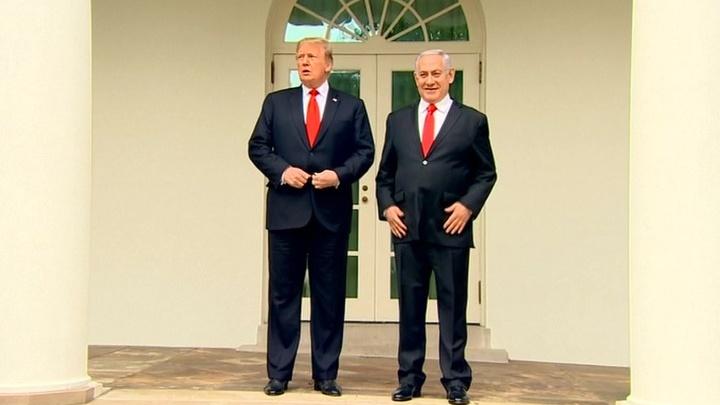 Трамп против всех: только Израиль поддержал решение президента США по Голанским высотам