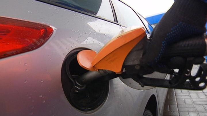 Нефтяники договорились заморозить рынок бензина до июля