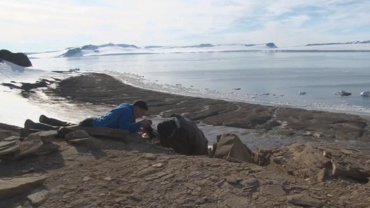 Российские нефтяники сохранили объем геологоразведочных работ