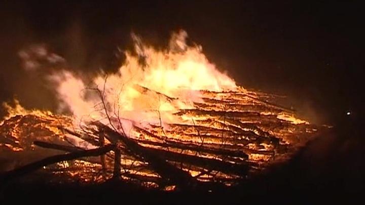 """Причиной пожара в """"Лосином острове"""" мог быть поджог"""