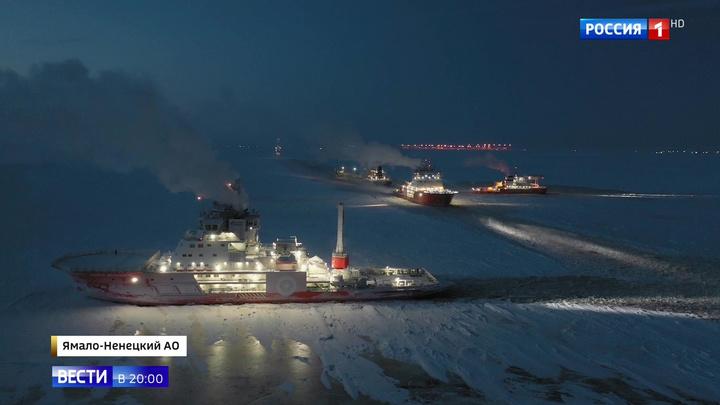 """""""Ворота Арктики"""" на Севморпути: Россия открыла северную кладовую"""