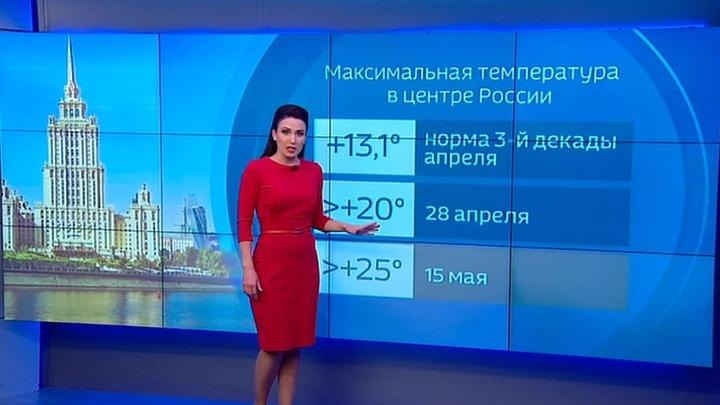 """""""Погода 24"""": Русскую равнину ждет пик потепления"""