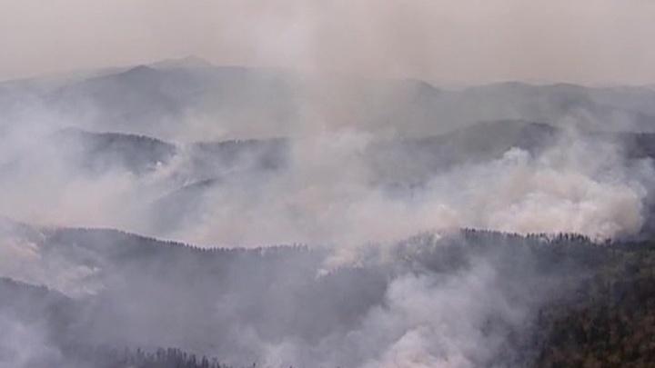 Лесные пожары: обстановка в Забайкалье и Курганской области остается сложной