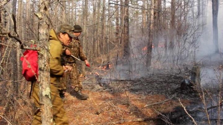 В Иркутской области бушуют лесные пожары