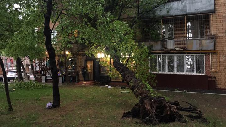 По Москве прошел сильный ураган