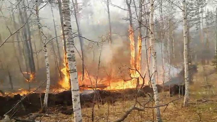 Иркутская область находится на первом месте по количеству очагов возгорания
