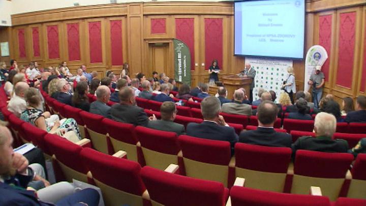 Москва получила престижную премию за заботу о деревьях