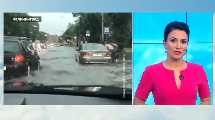 """""""Погода 24"""": """"Клаус"""" принесет в Россию дожди и тепло"""